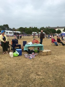 Queens Birthday Picnic 2016 - pic 10