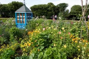 Bee Garden pic 1