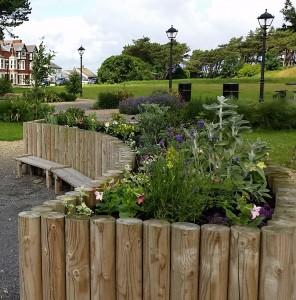 Sensory plants community garden